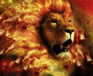 Battle Lion