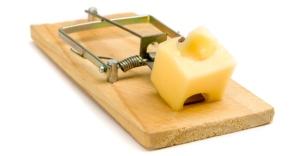mouse-trap1