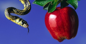 Serpent-and-Apple